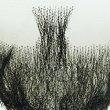 画像5: RM-1002 付け髭 ボックススタイル 舞台や演劇に 濃いバージョン 普段使いにもぴったり 薄いバージョン 人毛100パーセント つけひげ ひげ あご リアル 本物  (5)